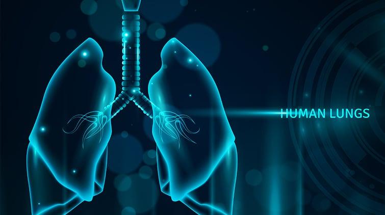 Dokter spesialis penyakit dalam khusus paru paru