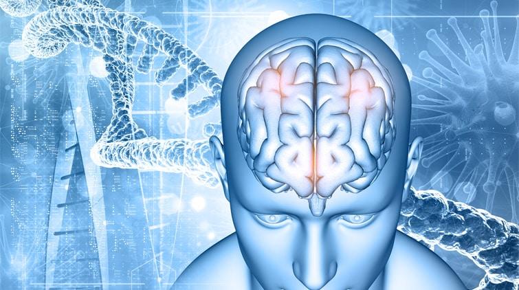 Read more about the article Tumor Otak: Gejala, Jenis, dan Penangannya